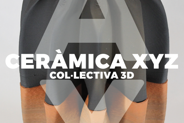 Col·lectiva 3D